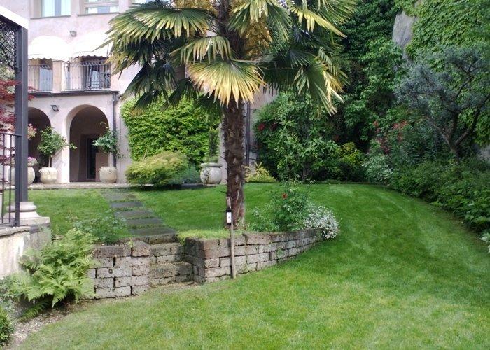 Giardino con arbusti da giardino