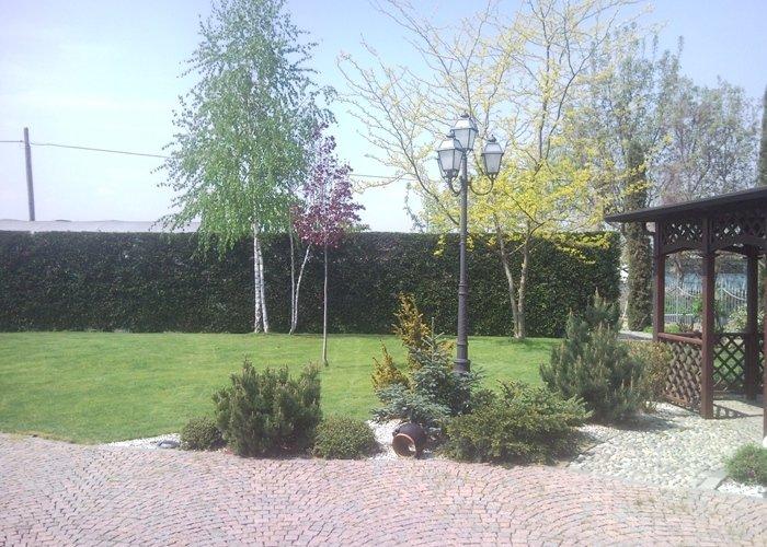 Dettaglio giardino