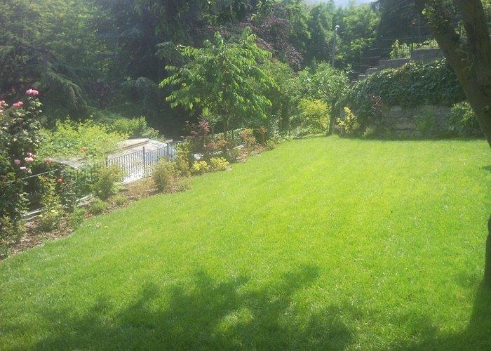 Panoramica prato in giardino privato