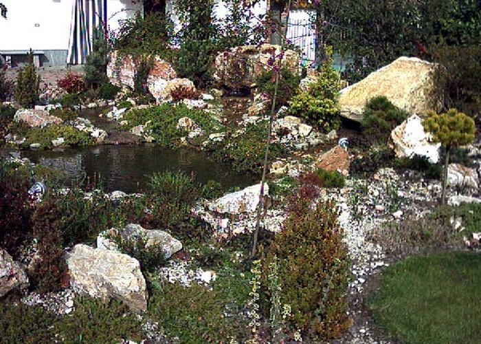 Immagini laghetti da giardino laghetto artificiale da for Costruzione laghetto koi