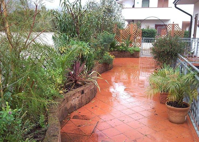 Allestimento giardini pensili
