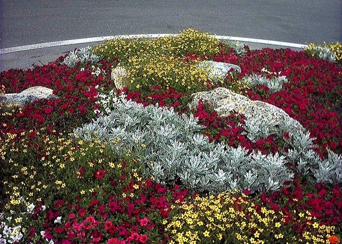 Dettaglio di decorazione floreale su rotatoria