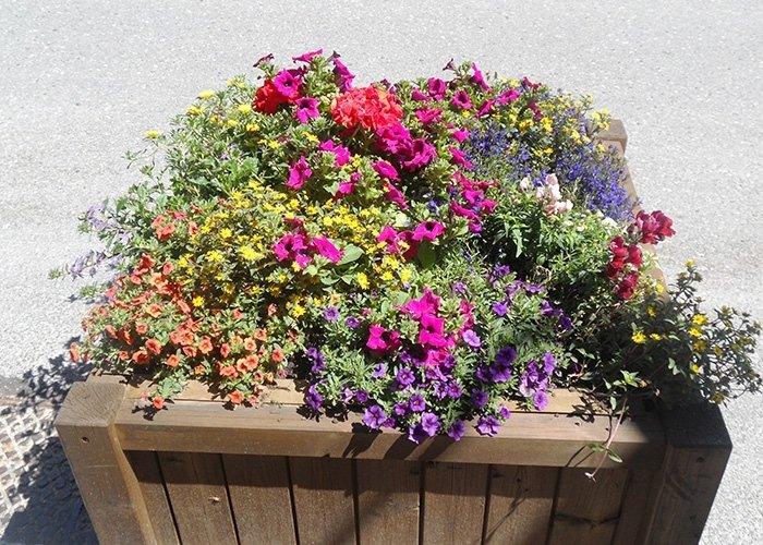 Fioriera con fiori di vario tipo