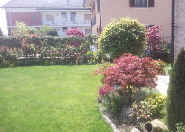 Panoramica giardino con siepe