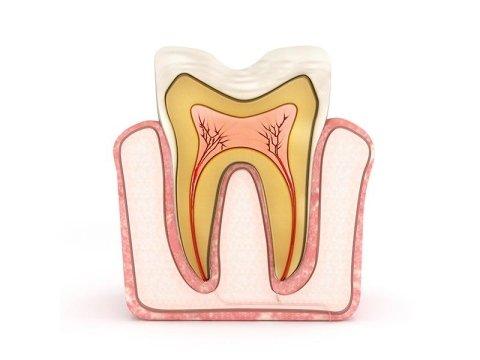 terapia dell'endodonto