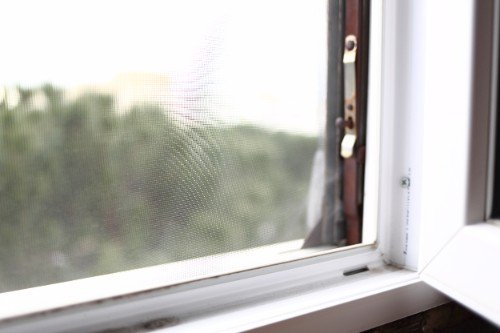 angolo di una finestra con zanzariera
