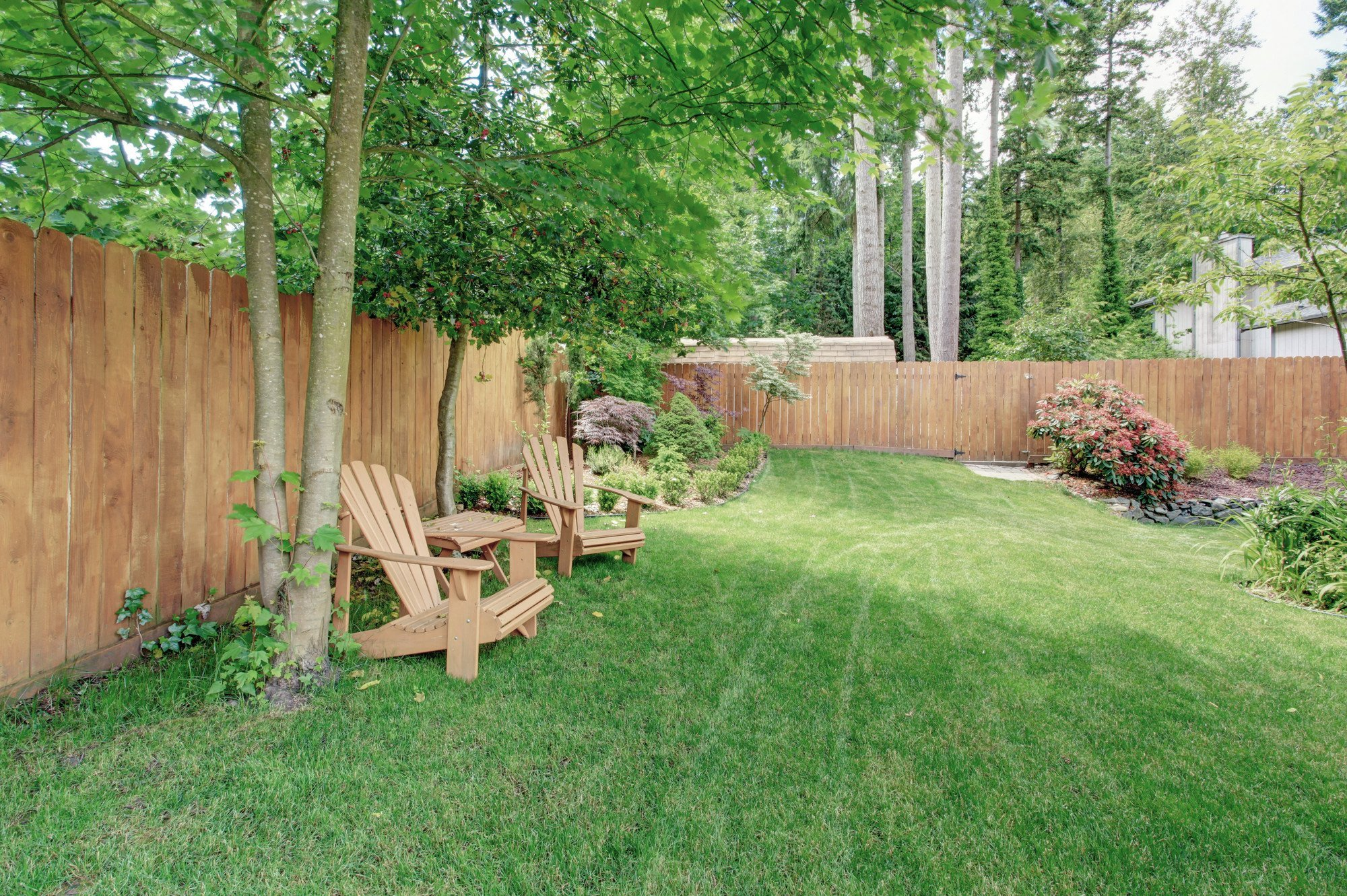 garden with wooden fence