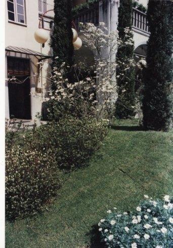 prato per giardini, progettazione giardini, giardini con alberi