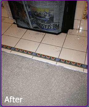 Cigarette Burns In Carpet Images Beetle