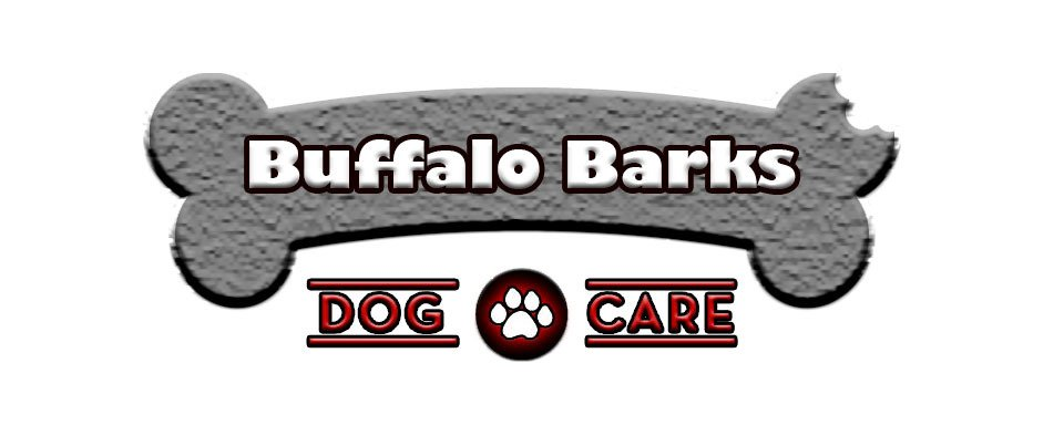 Dog Daycare Buffalo, NY
