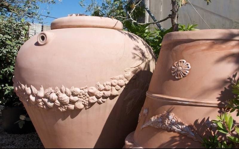 Vendita piante ornamentali San Felice Circeo
