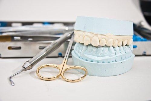prototipo di dentatura affiancata da strumenti dentistici su fondo bianco