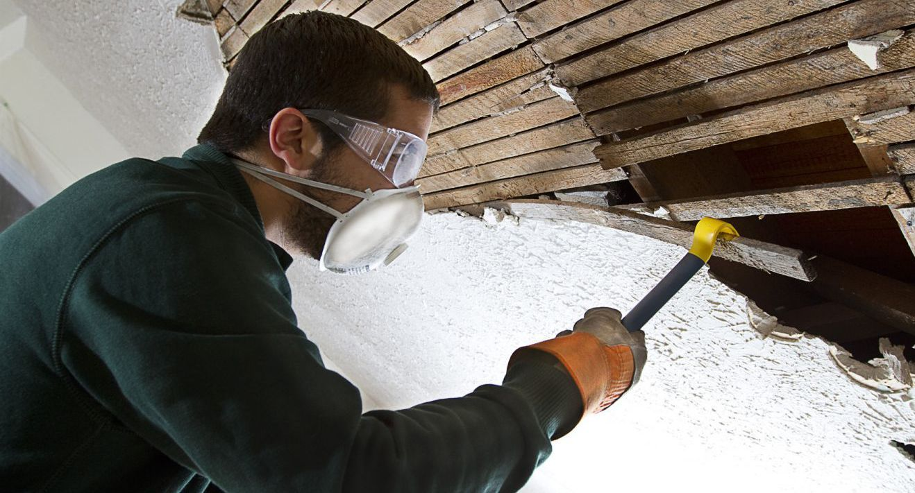 pest control inspection in Mount Washington, KY
