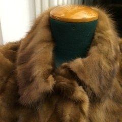 pelliccia in visone