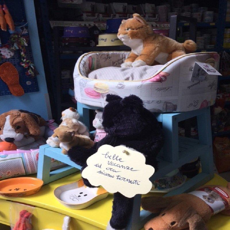 Foto di cucce per cani e gatti con peluches