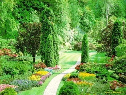 Giardino con fiori