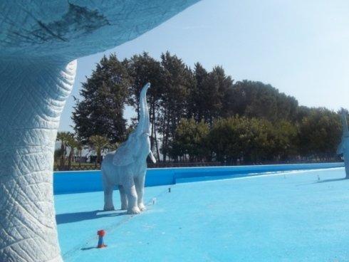 Verniciatura piscine