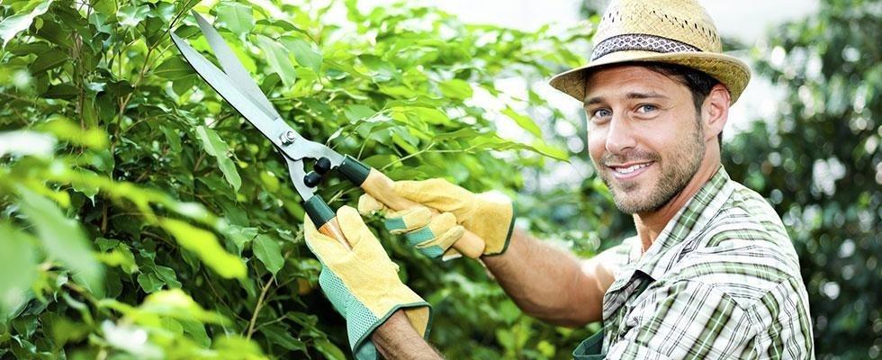 giardinaggio genova