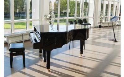 pianoforte a corda