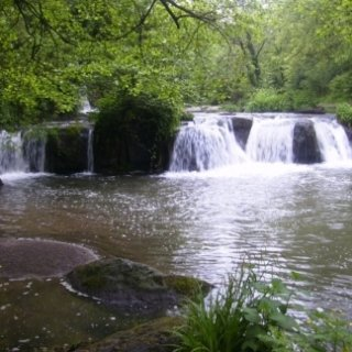Parco naturale regionale Valle del Treja