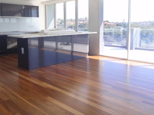 Spotted Gum Qld Hardwood Flooring Gold Coast