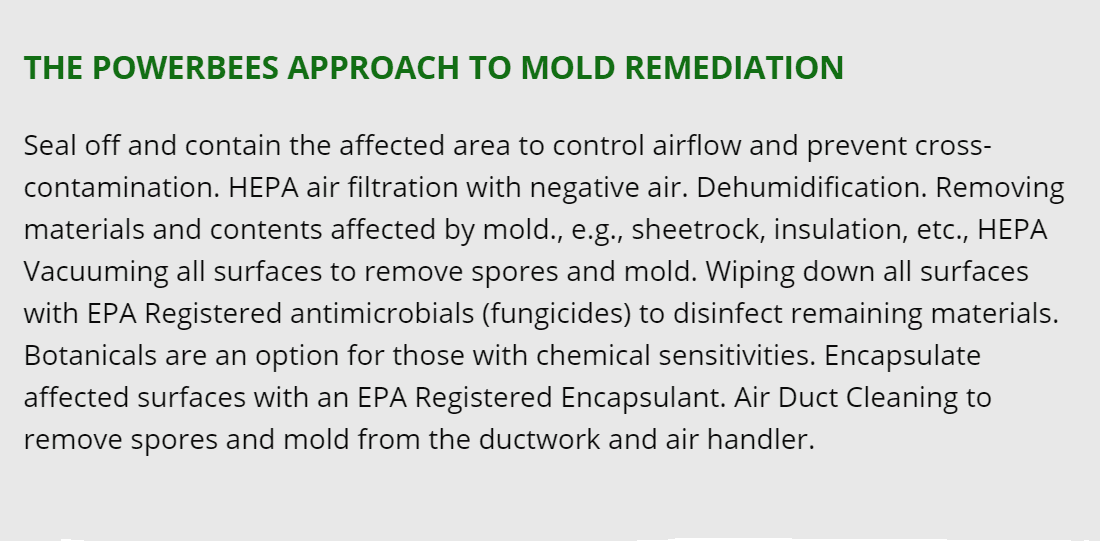 lexington mold removal