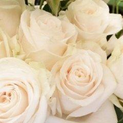 addobbi per matrimoni, oggettistica, piante