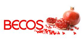 prodotti Becos