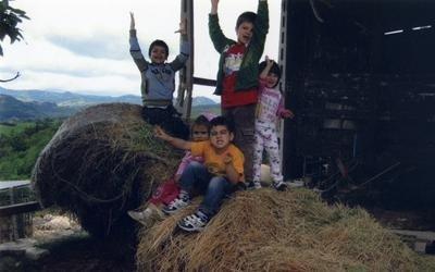 I bimbi dell'asilo nel fienile