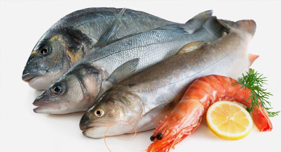top quality seafood