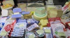 formaggi, brie, grana padano, fontina, pecorino, formaggio fresco