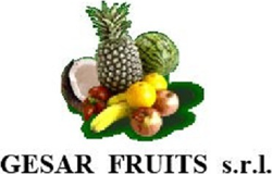 GESAR FRUITS - LOGO