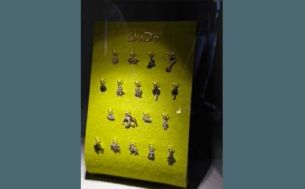 vetrina dodo