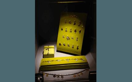 vetrina dodo collezione