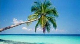 palma, spiaggia fine