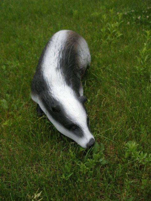 un tapiro
