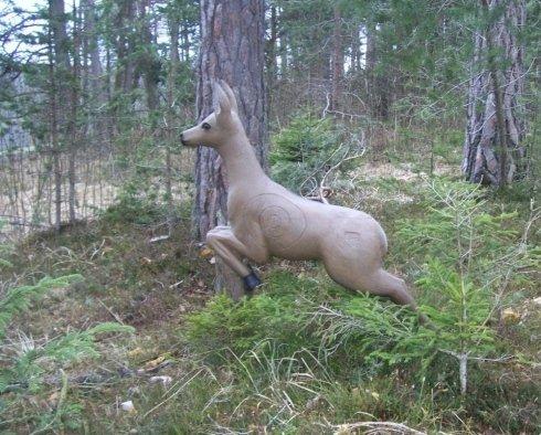 un antilope