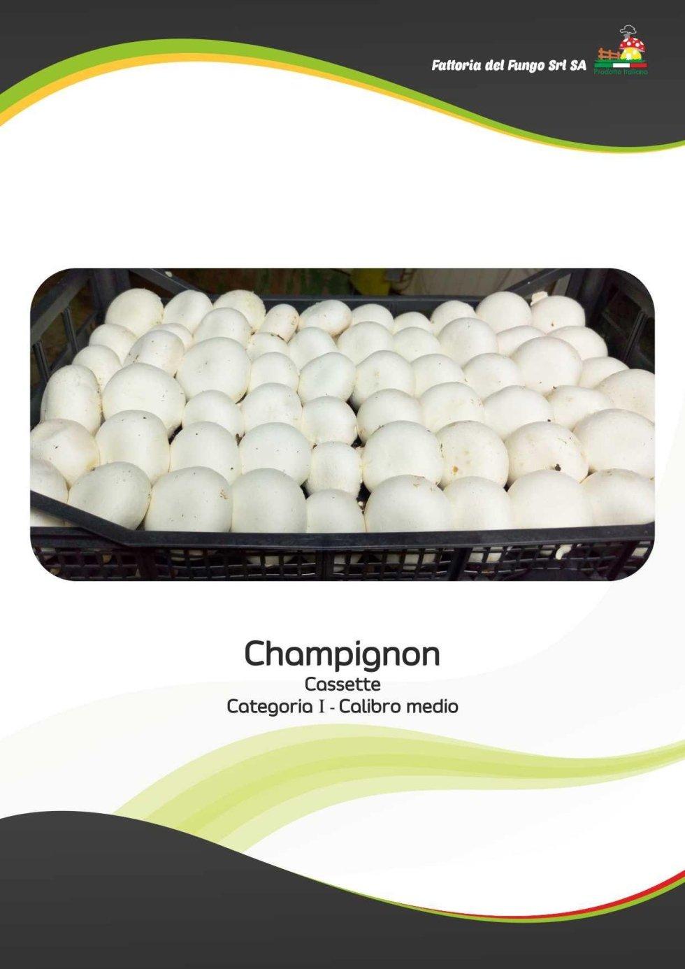 Cassetta di champignons