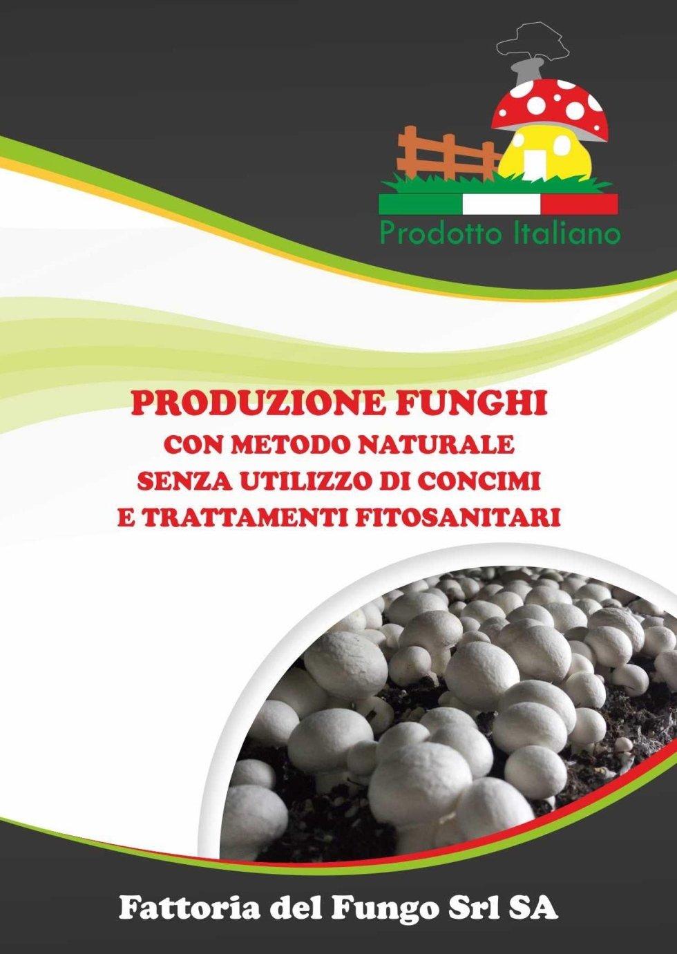 Produzione di funghi
