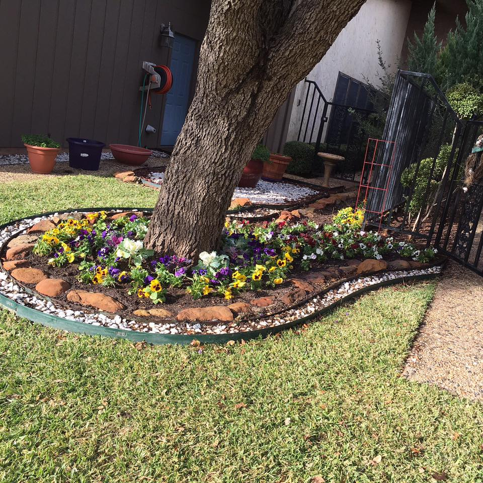 Weed Control Services Abilene, TX