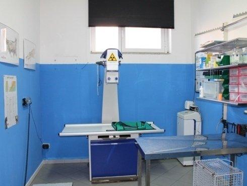 Lettino della clinica veterinaria