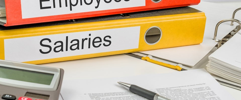 Salaries and Employees books