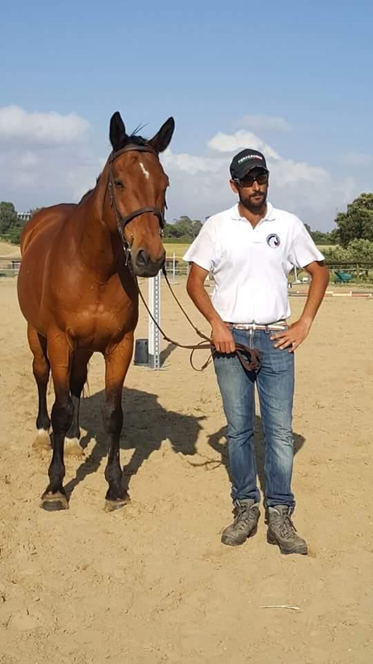 addestratore cavalli