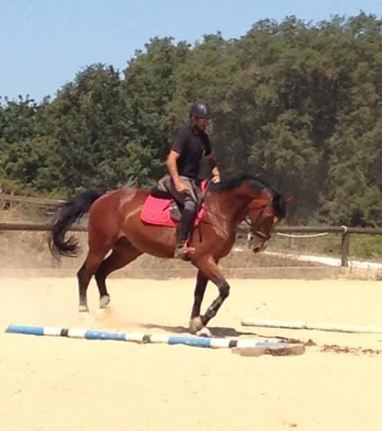 persona al trotto su un cavallo
