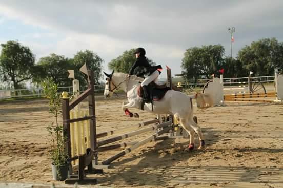 maneggio lezioni per andare a cavallo