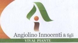 partner Azienda agricola Vivai Piante