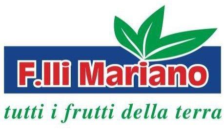 FRATELLI MARIANO 2000-Logo