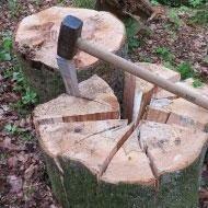 vendita di legna da ardere