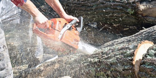 Wooden tree cutting