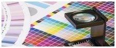 check up colore